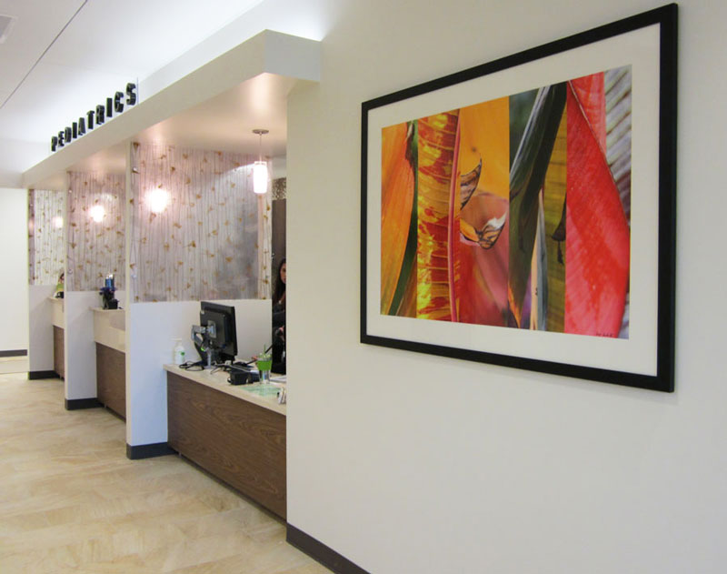 Photograph by Joy Doherty. Framed size approximately 44″ x 64″. The art is placed in a hospital corridor of Sharp Rees-Stealy Medical Center, San Diego. This was one of Barbara Markoff's projects.